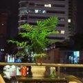 Khách sạn Little Saigon Boutique